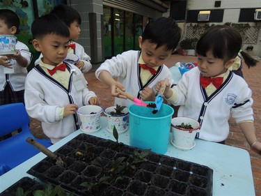 green education in class 3